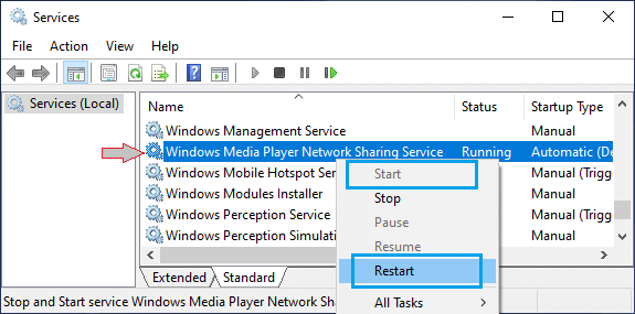 Restart Windows Media Player Service