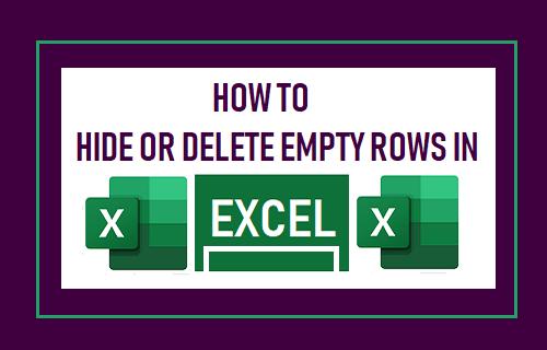 Hide or Delete Empty Rows in Excel