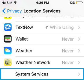 System Services Option on iPhone