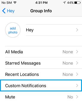 WhatsApp Custom Notifications Option