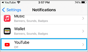 YouTube on iPhone Settings Screen