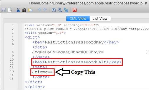 Copy Restrictions Passcode Salt Key in iBackupBot