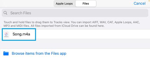 Imported File in GarageBand App