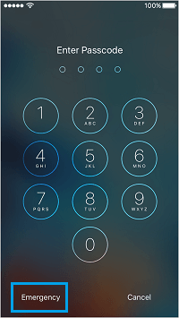Emergency Medical ID Access on Locked iPhone Screen