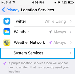 System Services Settings Option On iPhone
