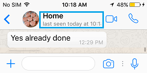 WhatsApp Last SeenTime on iPhone