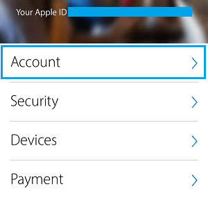 Apple Account Tab