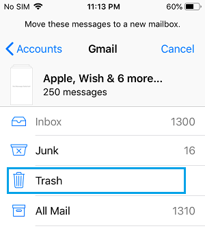 Multiple Email Messages Selected on iPhone