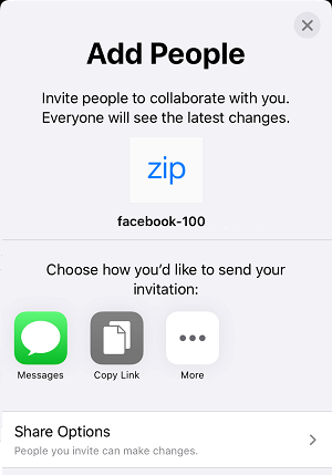 Add People and Share Options in iCloud Drive on iPhone