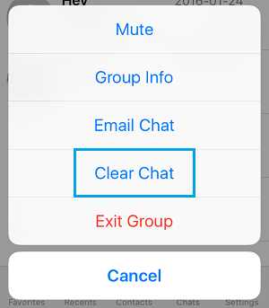 WhatsApp Group Clear Chat Option On iPhone
