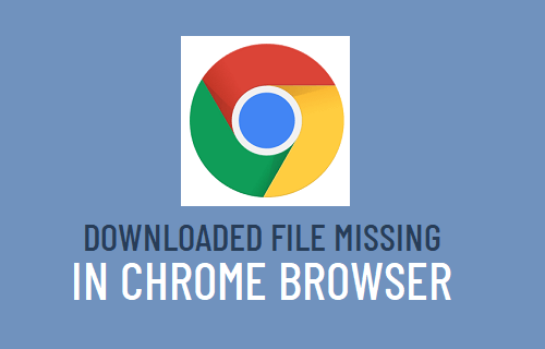 Downloaded File Missing in Chrome Browser