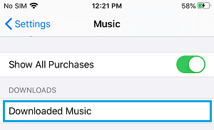 Downloaded Music Settings Option on iPhone