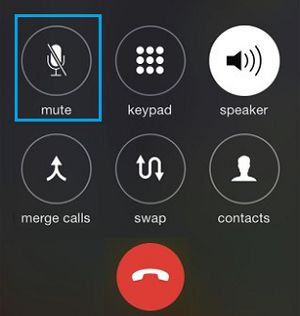 iPhone Mute Call Button