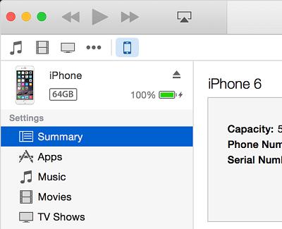 Summary Tab in iTunes
