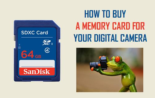 How to Buy a Memory Card for Your Digital Camera