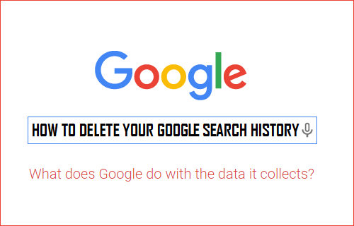 Google Keeps a Record of Your ENTIRE Search History. Here's How to Delete It in 4 Easy Steps