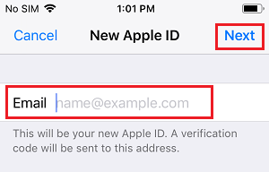 Enter New Apple ID Email Address On iPhone