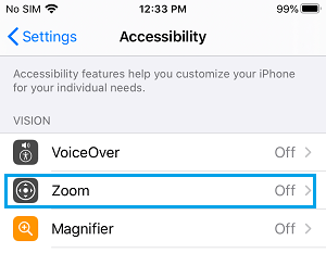 Accessibility Zoom Settings Option on iPhone