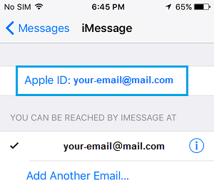 Apple ID on iMessage Settings Screen on iPhone