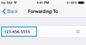 Call Forwarding To Number on iPhone