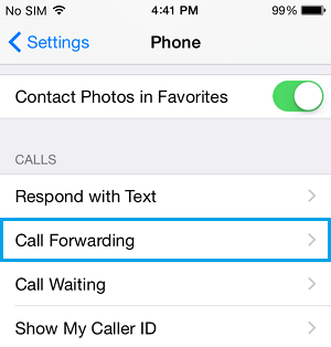 Call Gorwarding Option On iPhone