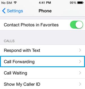 Call Gorwarding Option On iPhone