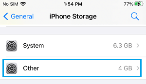 Amount of Other Storage on iPhone