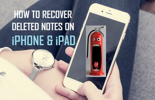 Recover Deleted Notes on iPhone and iPad