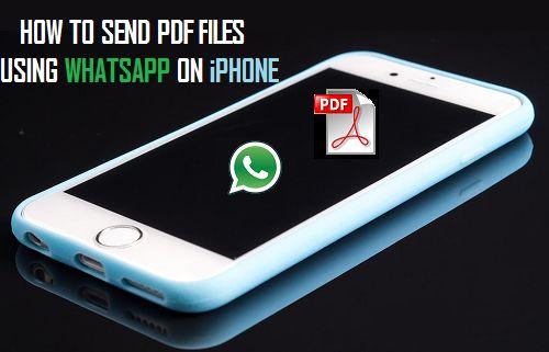 Send PDF Files Using WhatsApp On iPhone
