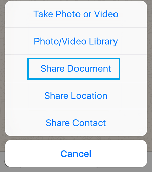 Share Document Option in WhatsApp for iPhone