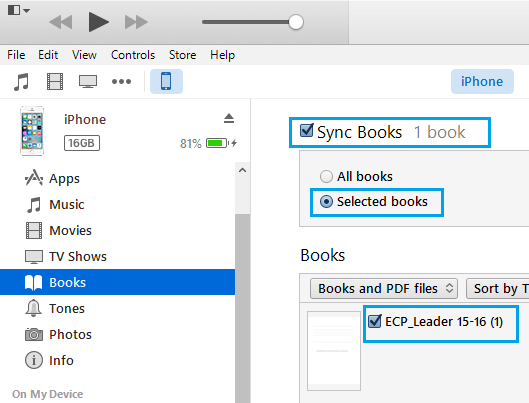 Sync File Options in iTunes