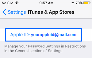 Apple ID on iTunes & App Store Settings Screen on iPhone