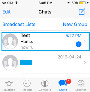 WhatsApp Contact Chats Screen on iPhone