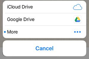 WhatsApp Document Share Options on iPhone