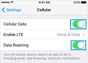 Disable Data Roaming and Cellular Data On iPhone