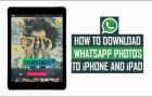 How to Download and Save WhatsApp Photos to iPhone