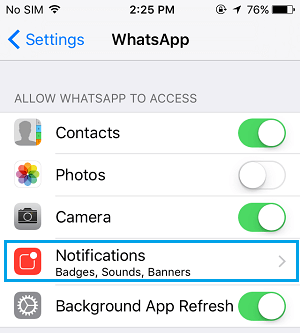 Whatsapp Notifications Setting Tab on iPhone