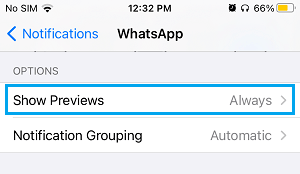 Show WhatsApp Previews Settings Option on iPhone