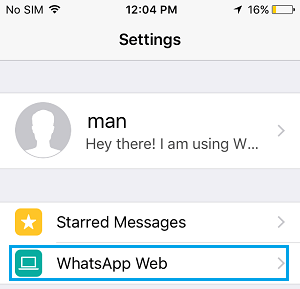 WhatsApp Web Tab on iPhone