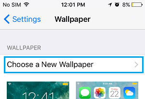 Choose A New Wallpaper Option On iPhone