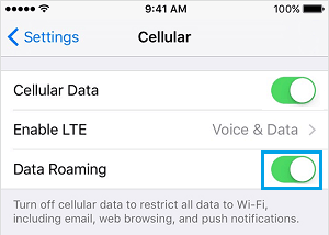 Enable Data Roaming on iPhone