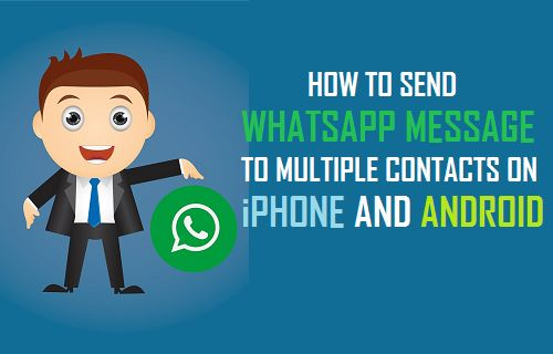 Send WhatsApp Message to Multiple Contacts on iPhone and Android