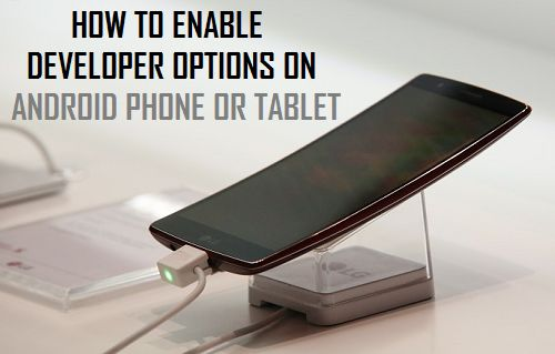 How to Enable Developer Options On Android Phone or Tablet