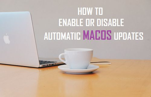 Enable Or Disable Automatic MacOS Updates