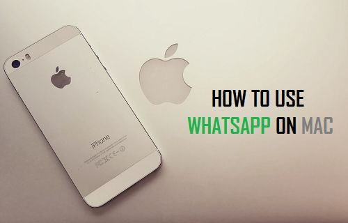 Use WhatsApp on Mac