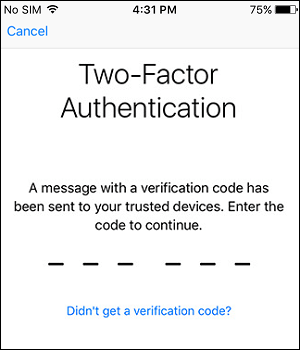 Enter Verification Code for Two Factor Authentication on iPhone