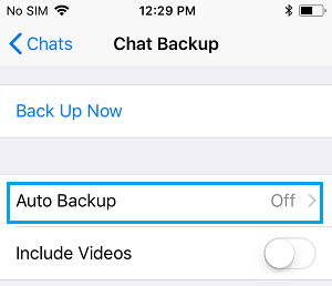 WhatsApp Auto Backup Option On iPhone