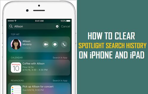 how to clear iphone search history how to clear spotlight search history on iphone and 7711