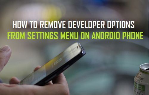 How to Remove Developer Options From Settings Menu On Android Phone