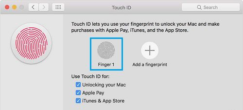 Remove Fingerprint on MacBook Pro
